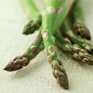 asparagus1_310