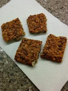 oat & pumpkin squares